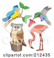 Royalty Free RF Clipart Illustration Of A Digital Collage Of A Bird Hummingbird Flamingo And Owl by visekart