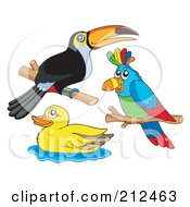 Digital Collage Of A Toucan Parrot And Duck