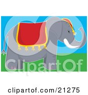 Cute Gray Circus Elephant Wearing A Red Hat And Blanket Ready For Rides At The Circus by Maria Bell