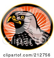 Royalty Free RF Clipart Illustration Of A Hawk Face Logo