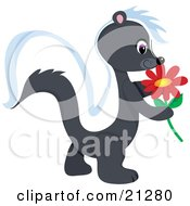 Clipart Illustration Of An Adorable Skunk Walking Outside And Getting A Whiff Of A Red Daisy Flower by Maria Bell