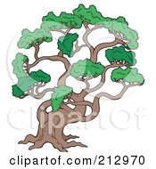 Royalty Free RF Clipart Illustration Of A Large Pine Tree