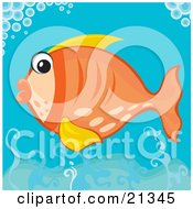 Poster, Art Print Of Surprised Orange Fish With Yellow Fins Swimming Under Bubbles In The Ocean