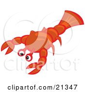 Sad Little Lobster Awaiting His Fait Of Becoming Someones Seafood Meal