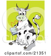 Thirsty Dairy Cow Drinking Milk From A Carton Through A Straw