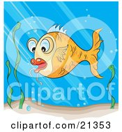 Poster, Art Print Of Surprised Orange Koi Fish Swimming Near Seaweed In A Pond