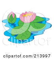 Royalty Free RF Clipart Illustration Of A Pink Lotus And Bud Floating On Water