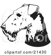 Clipart Illustration Of An Airedale Terrier Dogs Head In Profile Facing To The Left by David Rey