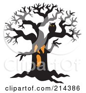 Royalty Free RF Clipart Illustration Of An Orange And Black Owl In A Scary Tree