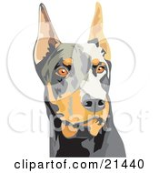 Clipart Illustration Of An Alert Brown And Black Doberman Pinscher Dog Or Dobie With Cropped Ears On A White Background