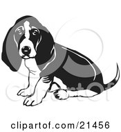 Clipart Illustration Of A Basset Hound Dog With Sitting And Looking At The Viewer While Wagging His Tail by David Rey