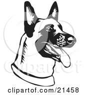 Clipart Illustration Of A Belgian Shepherd Dog Hanging His Tongue Out While Panting