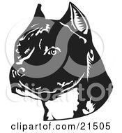 Clipart Illustration Of An American Staffordshire Terrier Dogs Head Facing Slightly Left by David Rey #COLLC21505-0052