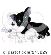 Royalty Free RF Clipart Illustration Of Two Kittens One Black One White Playing Together