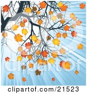 Clipart Illustration Of Rays Of Light Shining Down In A Blue Sky On Orange And Yellow Autumn Leaves On A Tree Branch by elaineitalia