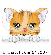 Royalty Free RF Clipart Illustration Of A Green Eyed Orange Cat Looking Over A Board
