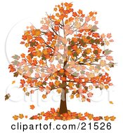 Autumn Tree With Vibrantly Colored Orange And Yellow Fall Leaves On The Branches And On The Ground Below by elaineitalia