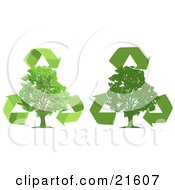 Clipart Illustration Graphic Of Green Recycle Arrows Circling Around Lush Green Trees One Silhouetted Over A White Background