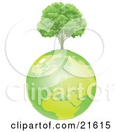 Healthy And Full Green Tree Growing On Top Of Green Planet Earth
