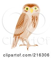 Royalty Free RF Clipart Illustration Of An Alert Owl by patrimonio