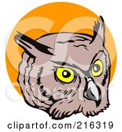 Royalty Free RF Clipart Illustration Of An Owl Face 1
