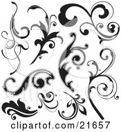 Clipart Picture Illustration Of A Collection Of Black And White Leaves And Branches