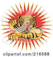 Aggressive Tiger Swiping His Paw