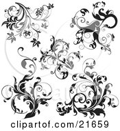 Clipart Picture Illustration Of A Collection Of Black And White Leafy Elegant Vines Over White