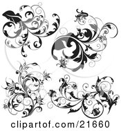 Clipart Picture Illustration Of A Collection Of Black And White Scrolling Branches With Leaves And Flowers