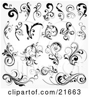 Clipart Picture Illustration Of A Collection Of Botanical Vines And Leaves In Black And White by OnFocusMedia