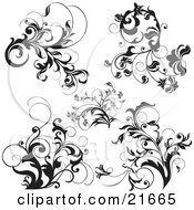 Clipart Picture Illustration Of A Collection Of Black And White Scrolling Vined Plants Over White