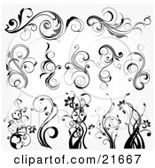 Clipart Picture Illustration Of A Collection Of Botanical Scrolling Plants And Flowers In Black And White