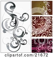 Vine Scrolling Over A White Background With Brown Red And Pink Versions