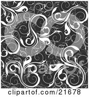 Floral Background Of White Vines Over Black