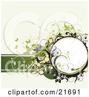 Clipart Picture Illustration Of Green Silhouetted Butterflies With Flowers Circles And Scrolls Over A White Background by OnFocusMedia