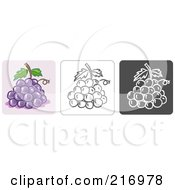 Royalty Free RF Clipart Illustration Of A Digital Collage Of Three Grape Icons In Color Sketch Style And Black And White by Qiun