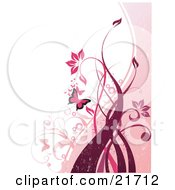 Fluttering Pink Butterflies And Flowering Plants And Vines Over A Pink And White Background