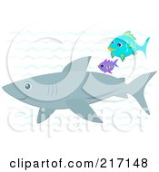 Royalty Free RF Clipart Illustration Of A Shark And Two Fish Swimming