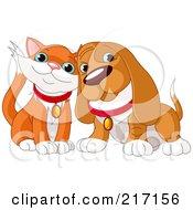 Cute Orange And White Cat And Basset Hound Cuddling