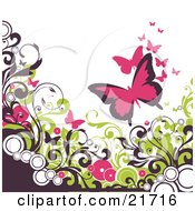 Nature Clipart Picture Illustration of Pink Butterflies Fluttering Over Circles And Brown And Green Vines Scrolling Over A White Background by OnFocusMedia