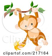Royalty Free RF Clipart Illustration Of A Cute Baby Monkey Swinging From A Branch By His Tail And Arm And Holding A Banana by Pushkin