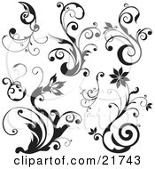 Blooming Flowers And Plants With Scrolls