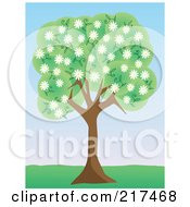 Royalty Free RF Clipart Illustration Of A Tree With Green Foliage And White Spring Blossoms In A Park by mheld