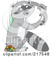 Mother And Baby Raccoon In The Shape Of An R