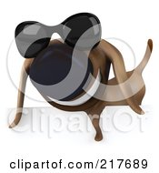 Royalty Free RF Clipart Illustration Of A 3d Chubby Dachshund Dog Wearing Shades Over A Blank Sign 2