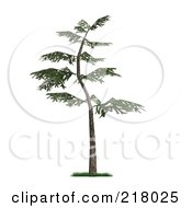Royalty Free RF Clipart Illustration Of A 3d Curved Pine Tree With Green Foliage