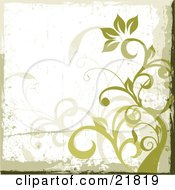 Clipart Picture Illustration Of A Green Flowering Plant With Curly Vines On A Grunge White Background