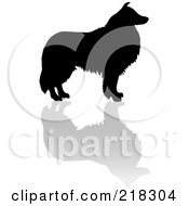 Royalty Free RF Clipart Illustration Of A Black Silhouetted Collie Dog And Reflection
