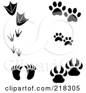 Royalty Free RF Clipart Illustration Of A Digital Collage Of Duck Penguin Bird Raccoon Dog Cat And Bear Prints