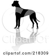 Royalty Free RF Clipart Illustration Of A Black Silhouetted Great Dane And Reflection by Pams Clipart